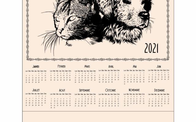 calendrier torchon